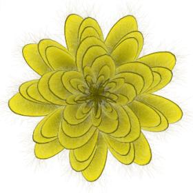 fiore-della-genesi.png